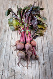Bunch Of Beetroots Stock Image