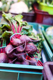 Bunch of beetroots Stock Photos