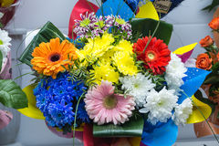 bunch of big fresh orange pink red gerbera chamomile and big white yellow blue chrysanthemum flower Stock Photos