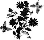 Bunch of black flowers with butterflies Stock Images