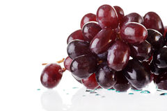 Bunch of black grapes Stock Image