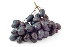 Bunch of black grapes Stock Photos