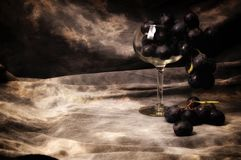 A bunch of black grapes filling wineglass on gray studio backdr royalty free stock photography