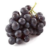 Bunch of black grapes isolated Royalty Free Stock Image