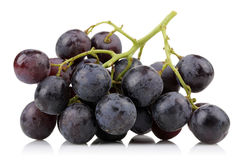 A bunch of black grapes Stock Images