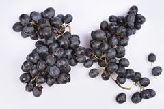 Bunch of black grapes for making wine on white background. Bunch of black grapes for making wine on a white background Stock Images