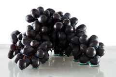 Bunch of black grapes Royalty Free Stock Photos