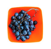 Bunch of black grapes in orange plastic plate Stock Image