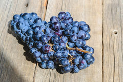 Bunch of black grapes on the table still life Stock Image