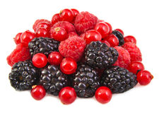 Bunch of blackberries, red currants and Royalty Free Stock Photography