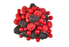 Bunch of blackberries, red currants and Royalty Free Stock Photos