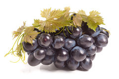 Bunch of blue grapes with leaf isolated on white background Royalty Free Stock Photo