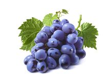 Bunch of blue grapes with leaves isolated royalty free stock image