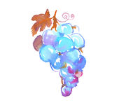 Bunch of blue grapes watercolor illustration. Royalty Free Stock Photos