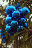 Bunch of blue New Year and Christmas balls on the Christmas tree Stock Images