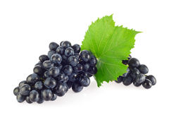 Bunch of blue organic grapes with green leaf. Royalty Free Stock Photo