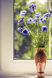 Bunch blue summery flowers on window. Bunch blue summery flowers in vase on window Royalty Free Stock Photos