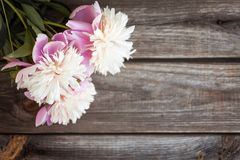 Bunch, bouquet of pink peonies on a wooden background. Frame of flowers Stock Photography