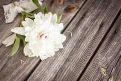 Bunch, bouquet of white peonies on a wooden background. Frame of flowers Royalty Free Stock Images