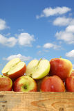 Bunch of braeburn apples and a cut one Royalty Free Stock Photos