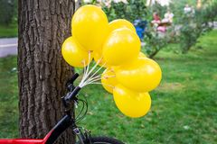 Bunch of bright yellow balloons with bicycle near big tree in city park. Green grass on background. Bike party and event outdoors. Bunch of bright yellow royalty free stock photography