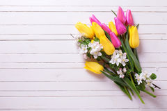 Bunch of bright yellow and pink spring tulips and apple tree flo Royalty Free Stock Photo