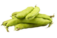 Bunch of broad beans on a white background Stock Photo