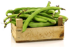 Bunch of broad beans in a wooden box stock image