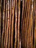 A bunch of brown bamboos with shadow can be used as a brown background stock photography