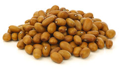 Bunch of brown beans Stock Images