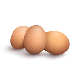 Bunch of brown vector eggs Royalty Free Stock Photography