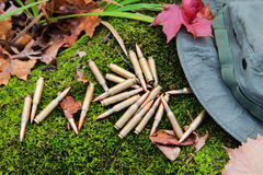 Bunch of bullets lying on the moss. Beside hat Royalty Free Stock Images