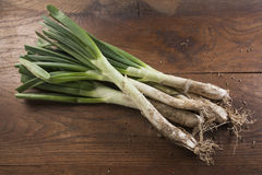 Bunch of calçots on wooden table Stock Photo