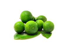 A bunch of Calamansi Stock Photos
