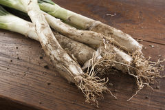 Bunch of calçots on wooden table Stock Images