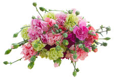 Bunch of carnation flowers Stock Photo