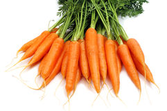 Bunch of carrot Stock Photo