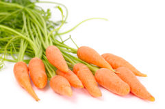 Bunch of carrot. Isolated on white background Royalty Free Stock Image