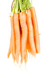 Bunch of carrot isolated Stock Photos