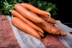 Bunch of carrots. With green leaves Royalty Free Stock Images