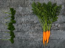 A bunch of carrots and parsley on the black village table. The view from the top. Flat lay. Stock Image