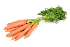 Bunch of carrots. A bunch of raw carrots on a white background Stock Images