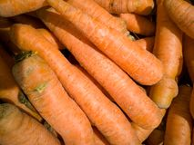 A bunch of carrots on the table royalty free stock image