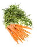 Bunch of Carrots on white Royalty Free Stock Photos