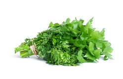 A bunch of celery Royalty Free Stock Images