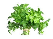 A bunch of celery Stock Photos