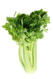 Bunch of Celery Stock Images