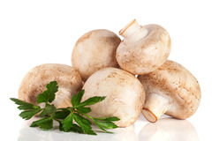 A bunch of champignon mushrooms with leaf parsley isolated on white background Royalty Free Stock Photo