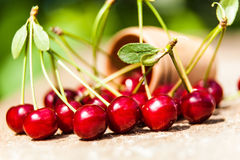Bunch  cherries spilled from Stock Photos