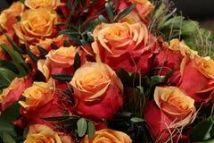 Bunch of cherry brandy Roses Stock Photo